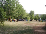 camping_cedre